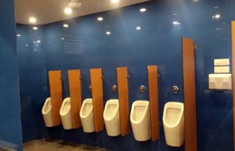 Urinal Partition System